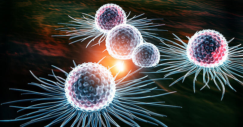 3-D rendering of human cancer cells