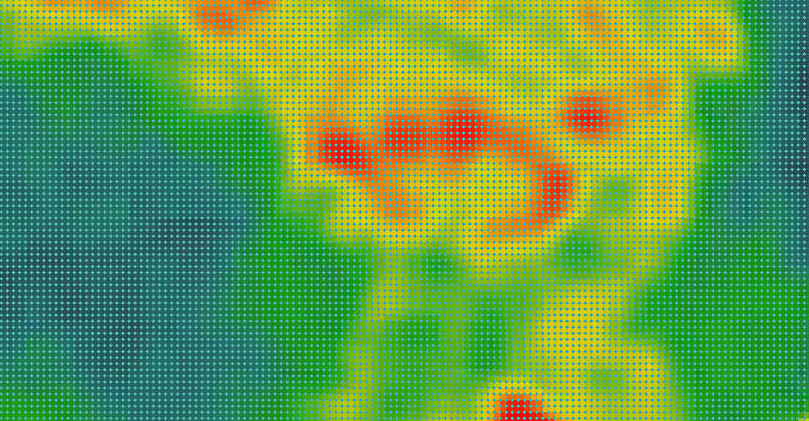 heat map depicting bioluminescence