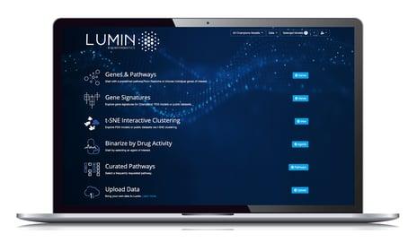 Lumin on laptop